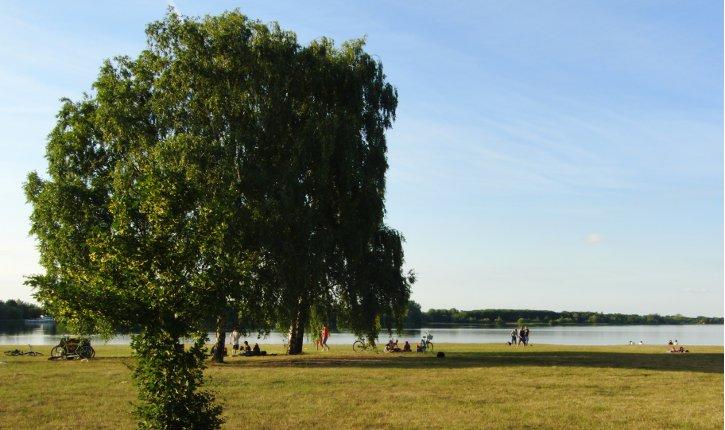 Niemtsch See