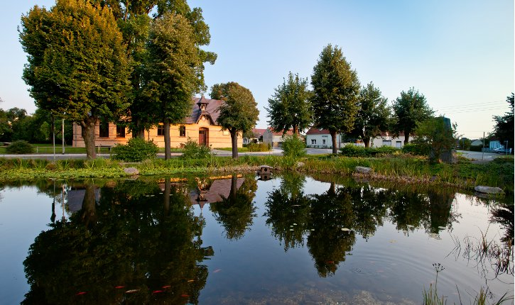 Ortsteil Peickwitz Dorfteich  Foto D. Winkler